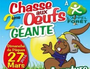 chasse-aux-oeufs-recadree